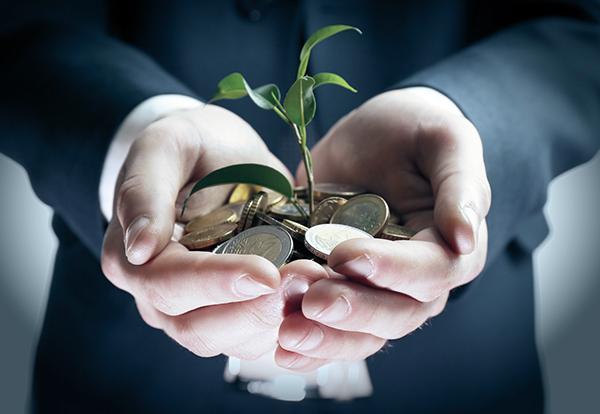 studio-tirabasi-servizi-Fondazioni-Enti-Trust-Gestione-del-patrimonio-finanziario-reggio-emilia-Grande